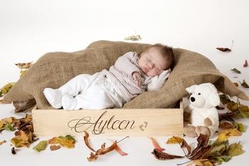 Foto Hüss - Portrait - Baby - Newborn - Herbst