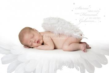 Foto Hüss - Portrait - Baby - Newborn - Engel