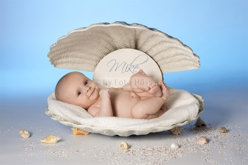 Foto Hüss - Portrait - Baby - Newborn - Muschel
