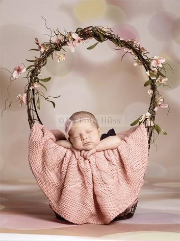Foto Hüss - Portrait - Baby - Newborn - Frühling